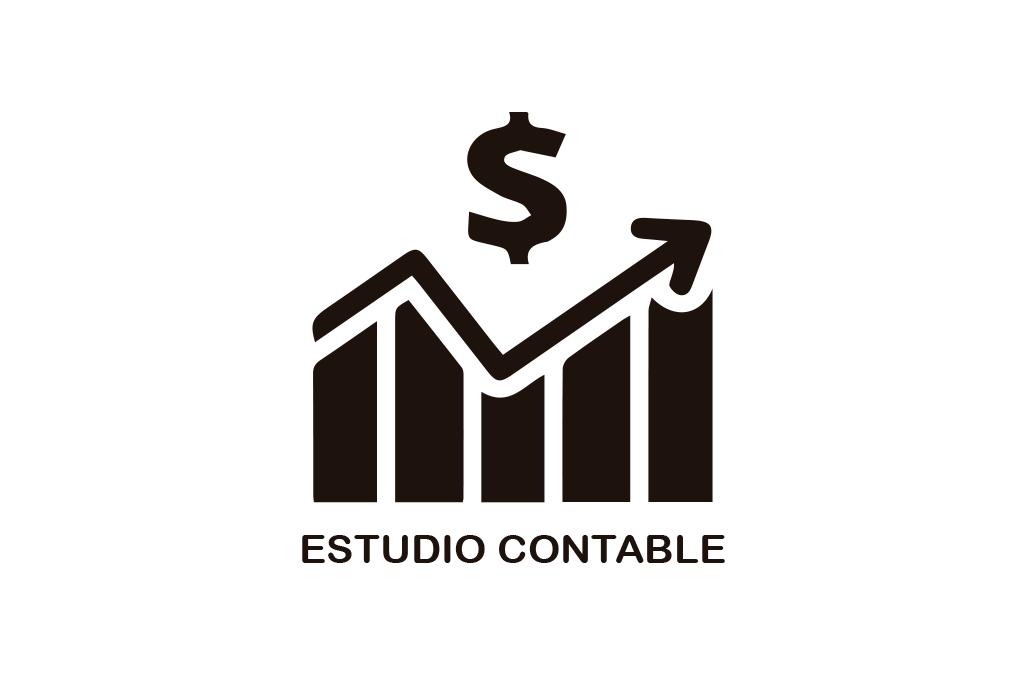 ESTUDIO CONTABLE GENERICO
